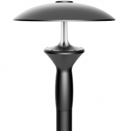 LED Parkų šviestuvas V07A-A + Blue, 30W, 60W  - 1